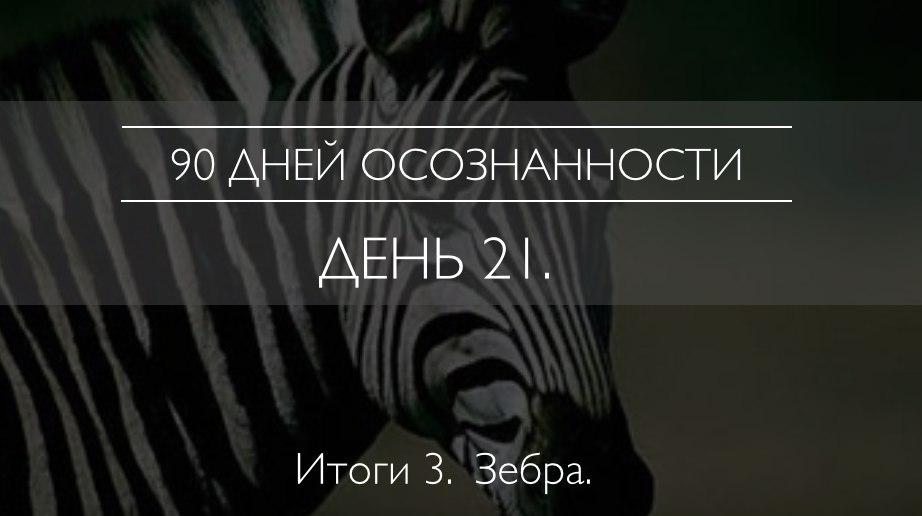 Xb3X3ZYQm0Y